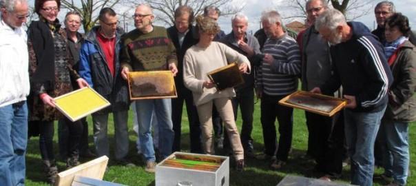 Les élèves apiculteurs ont appris à entretenir et changer les cadres de leurs ruches. - dr