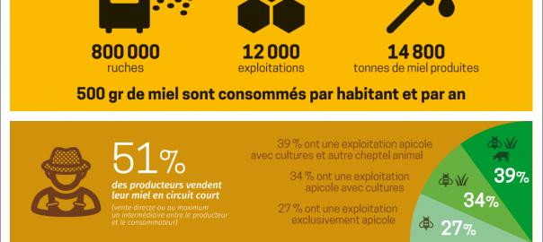 miel_et_apiculture_en_france